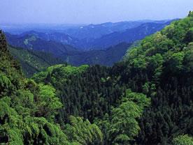 Mountain Hike Course